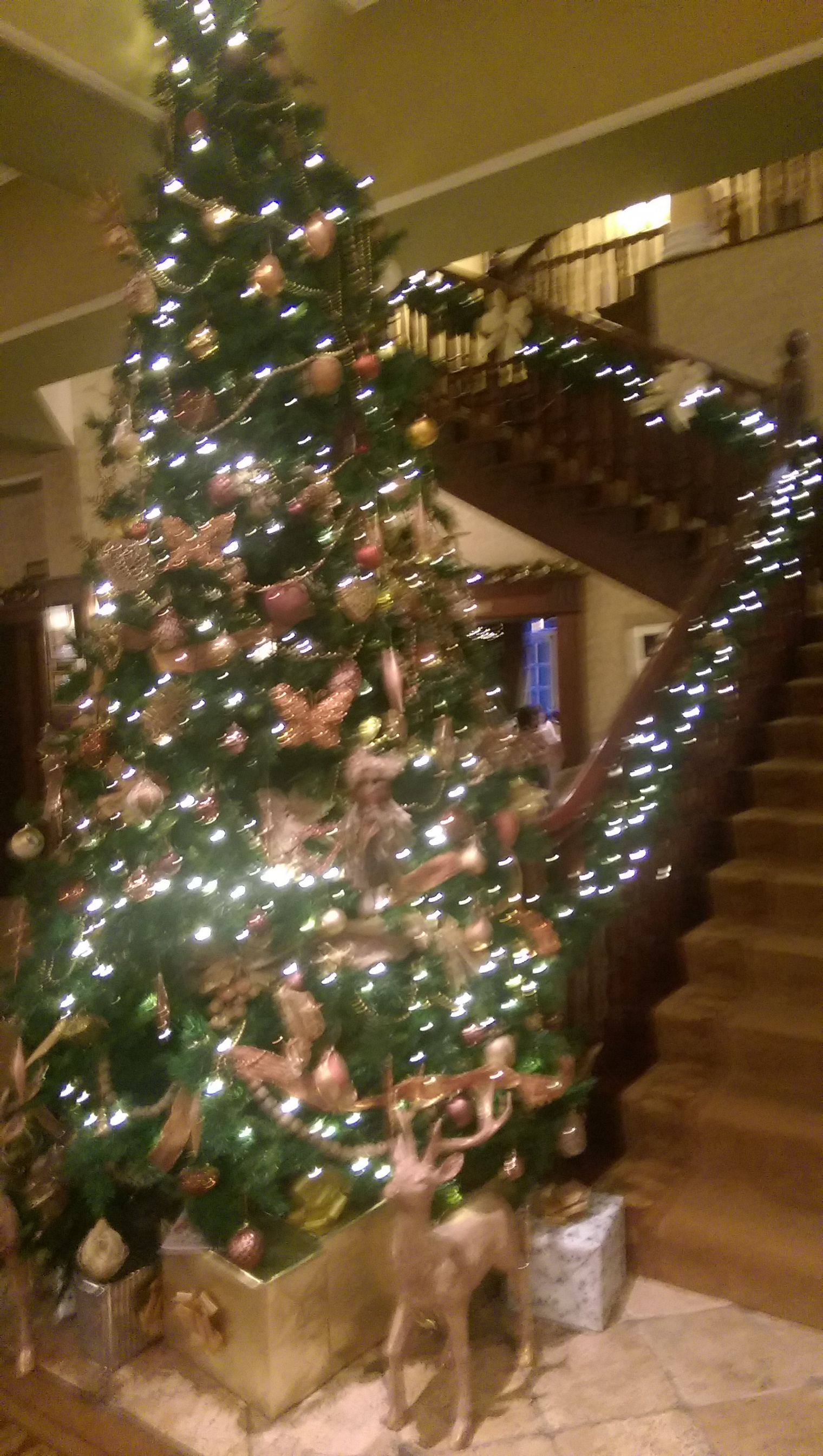 christmas staircase at hayfield manor co cork ireland